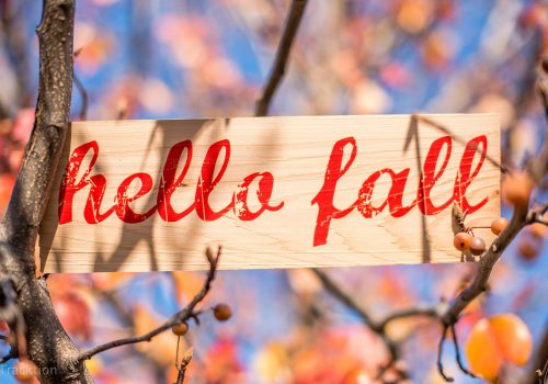 Custom plank that reads Hello Fall